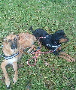 Kani und Zoe- Team