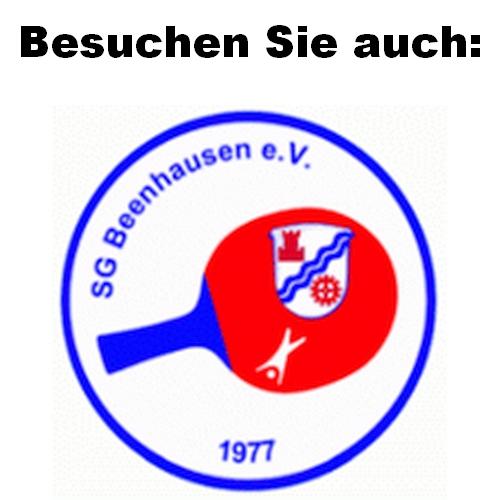 Derzeit hat der Verein 123 Mitglieder wovon ca. 40 am aktiven Spielbetrieb teilnehmen. Die Mitglieder kommen aus der ganzen Großgemeinde Ludwigsau, Alheim, Rotenburg und Bad Hersfeld. Neben dem Tischtennis, gibt es bei der SG Beenhausen auch einen Turn- und Gymnastikabteilung.